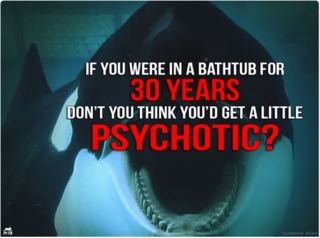 Ask SeaWorld